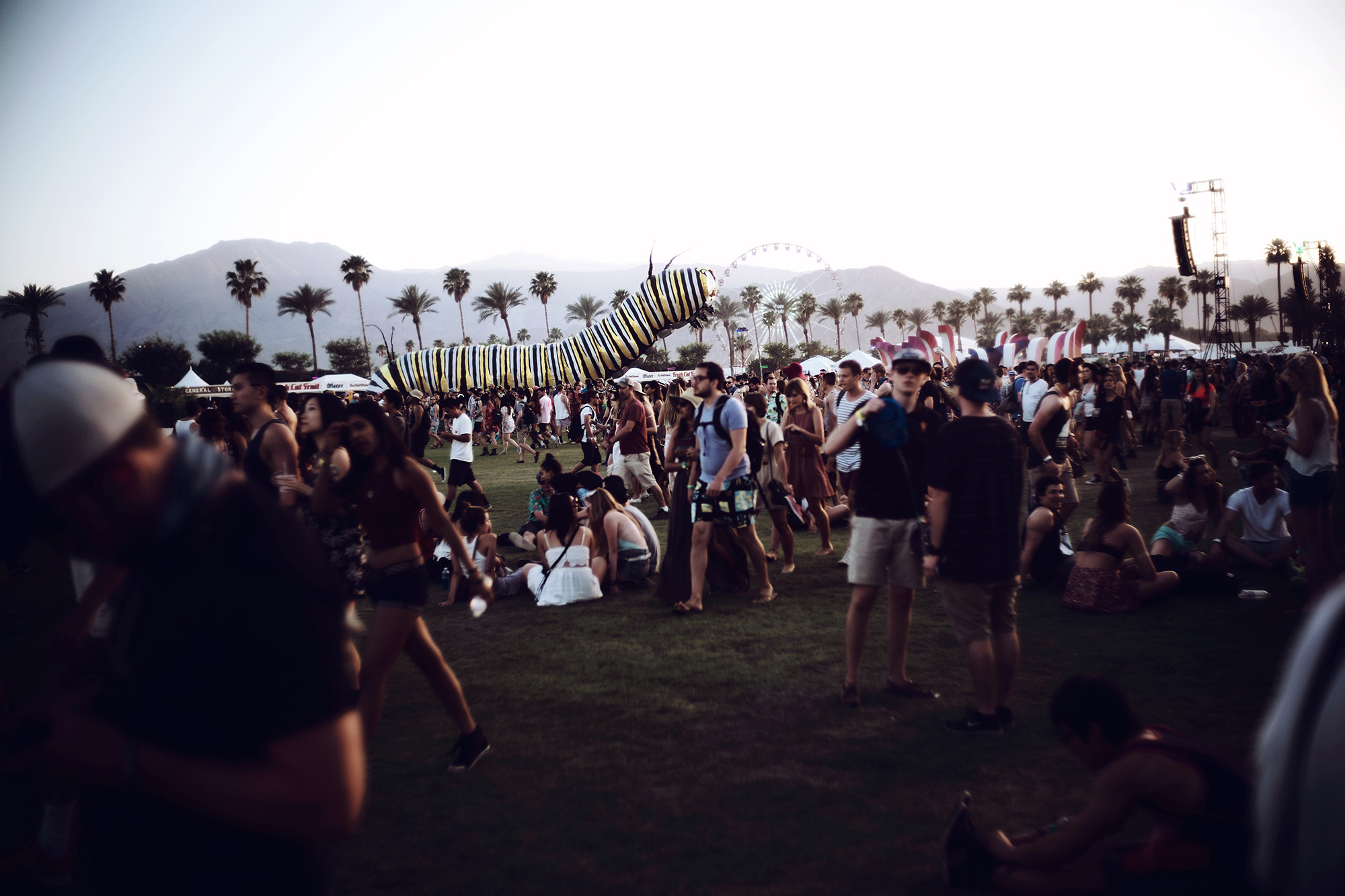 COACHELLA_2015_impressions-32