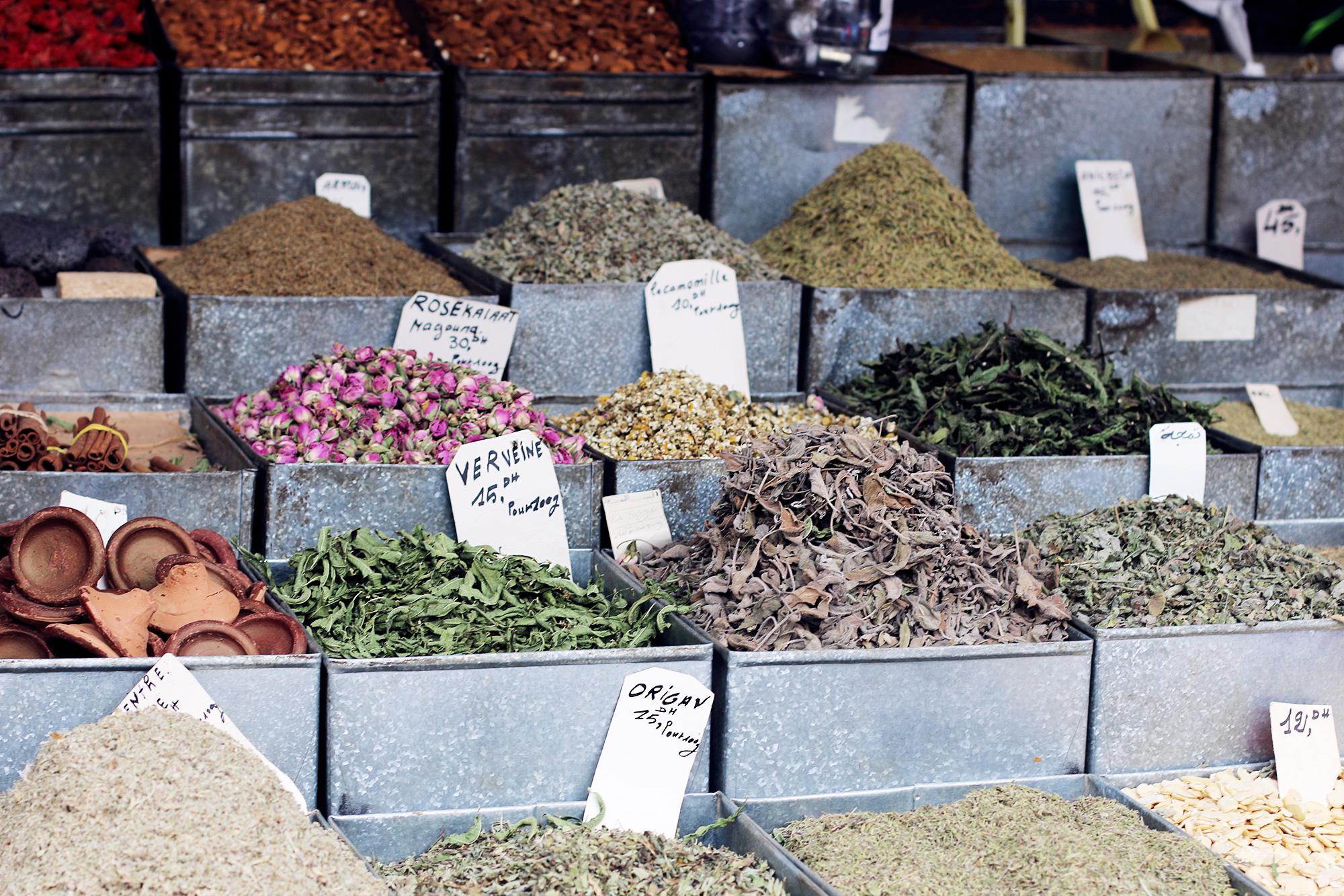 Marrakch-Travel-Tips-8