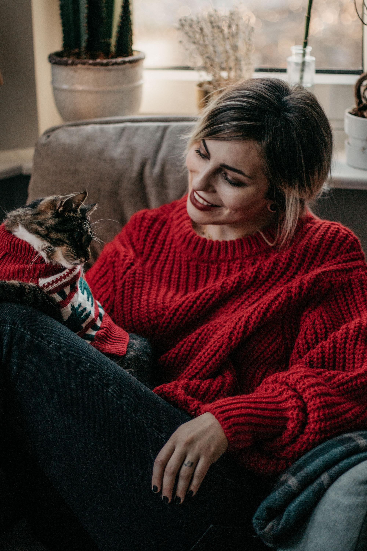 Рождественский Гид по подаркам: друзья животных и любители домашних животных | милые кошки в рождественских костюмах | Рождественская открытка