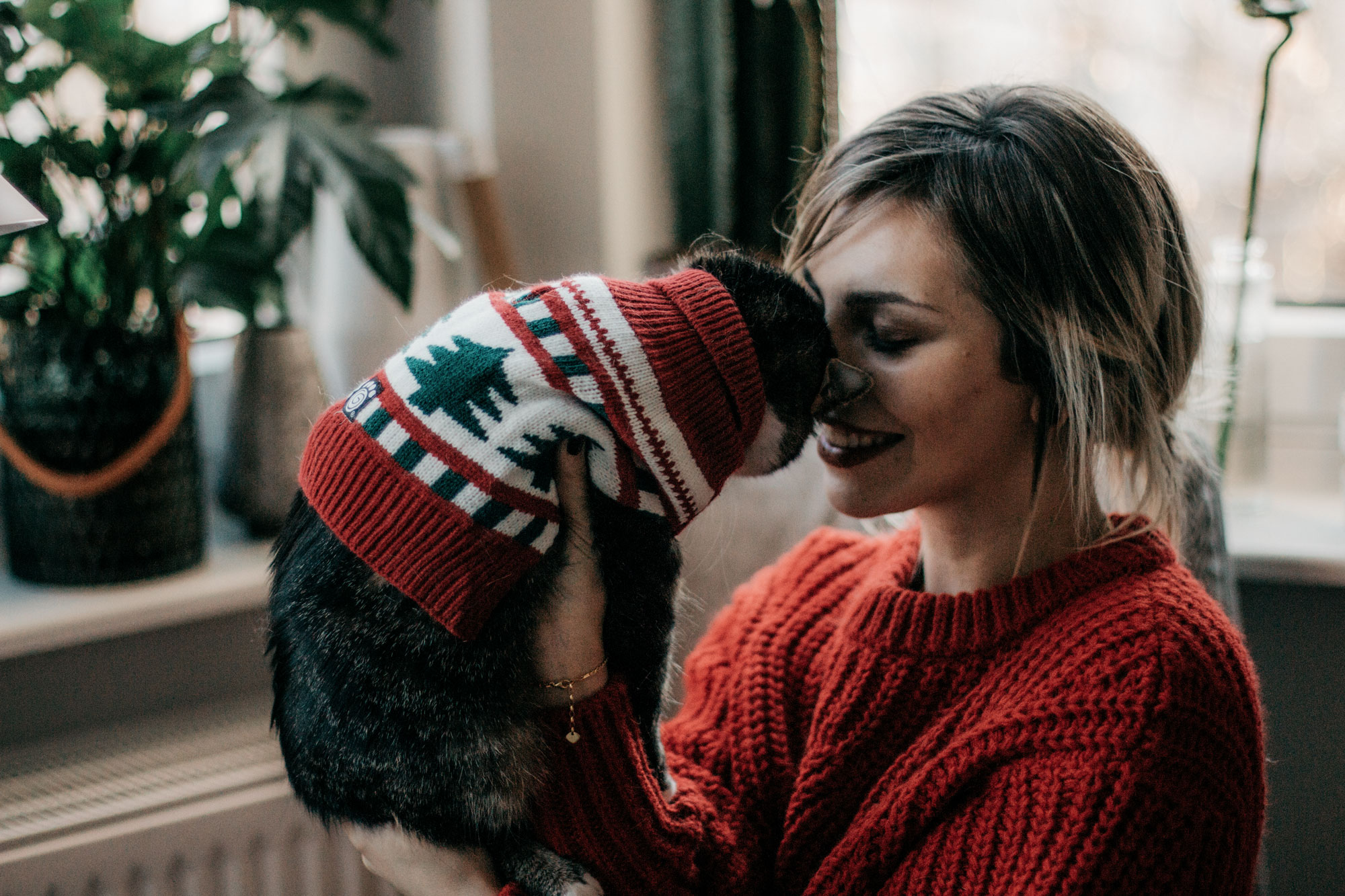 Christmas Gift Guide: animal friends & pet lovers | cute cats in christmas costumes | advent postcard