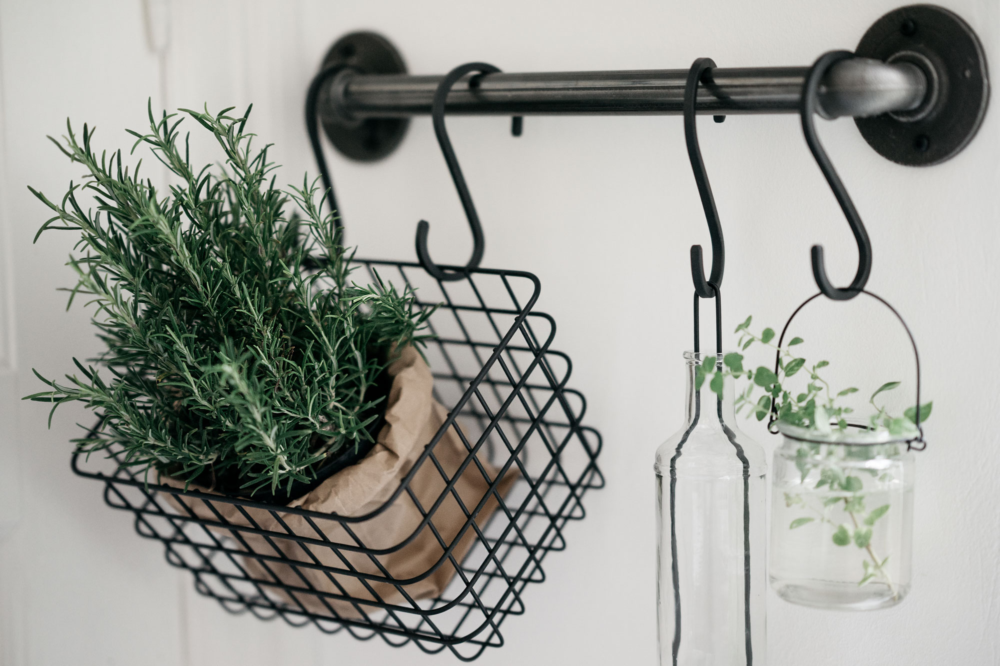 Rackbuddy clothing racks | DIY inspiration | build your own home garden of water pipes