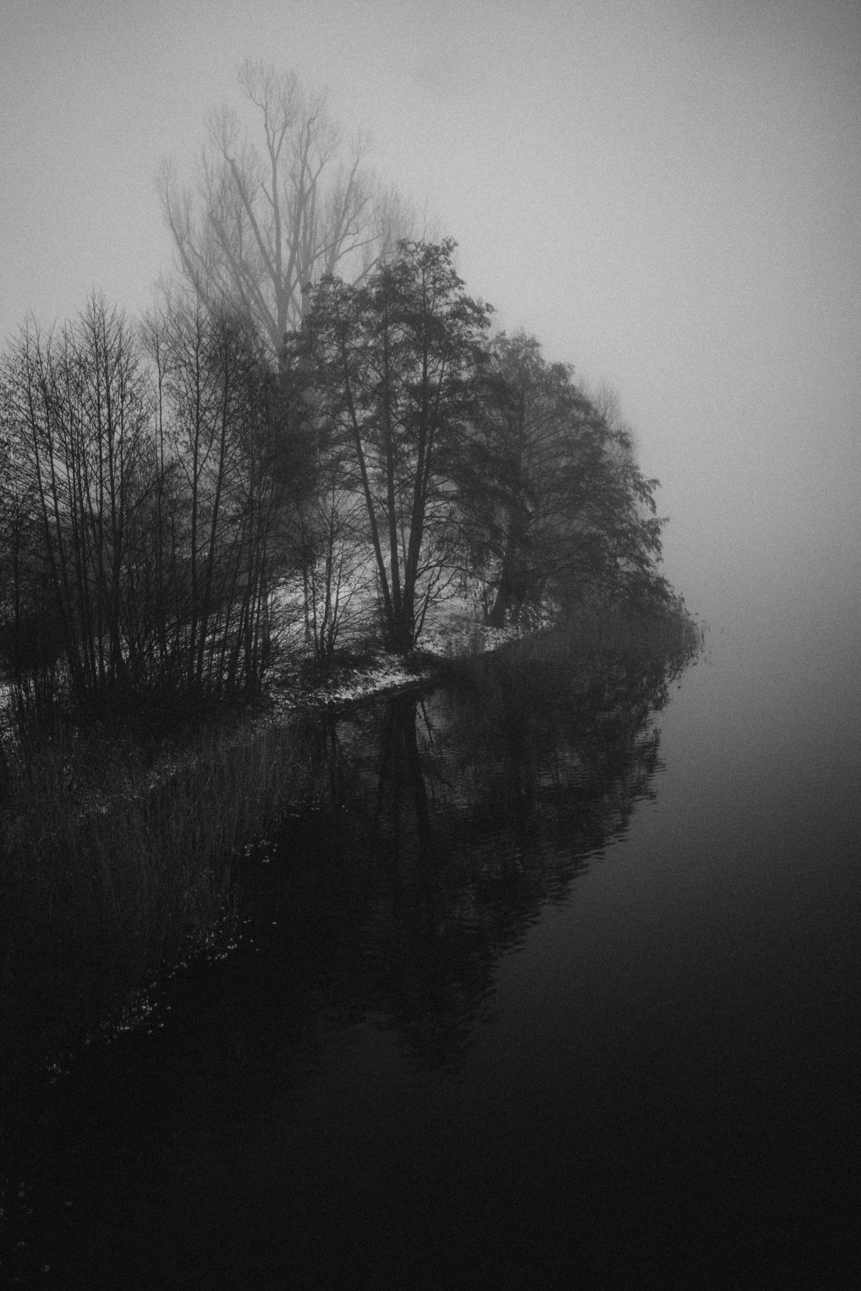 Moody Nature Photograpy | Berlin, Brandenburg | Winter